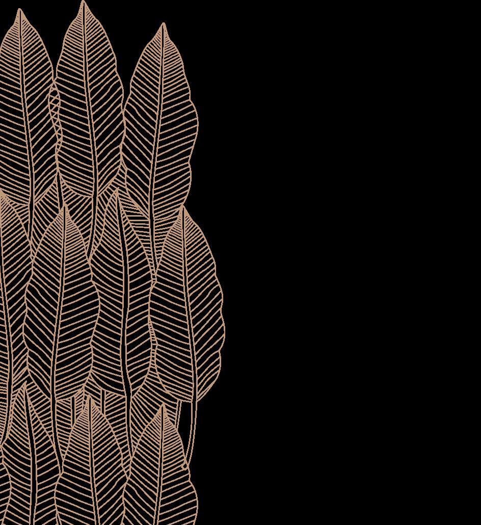 img-layers_02
